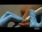 2012 - L'ULTIMA BATTAGLIA - (Nwo Vs RISVEGLIATI) - (RICARICALO PRIMA CHE SIA RIMOSSO ANCORA. TNX)