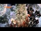 Canzone pubblicità Wind Spot  All Inclusive Special Natale dicembre 2013